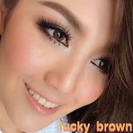 dreamcolor lucky brown