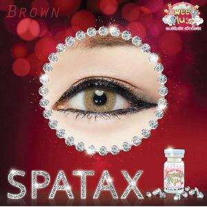spatax brown sweety