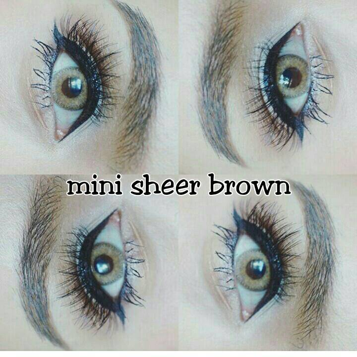 mini sheer brown (2)