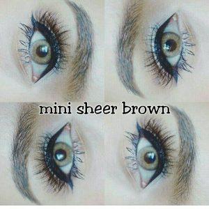 mini sheer brown (2)