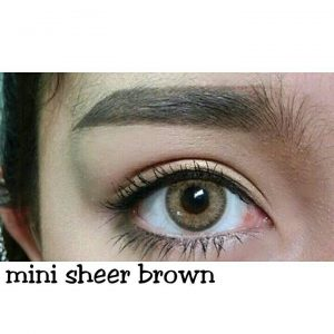 mini sheer brown 4