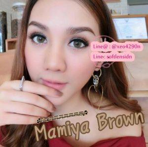 mamiya-brown-1