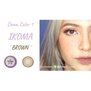 dreamcolor1_ikoma_brown (3)