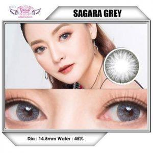 dreamcolor_sagara_gray