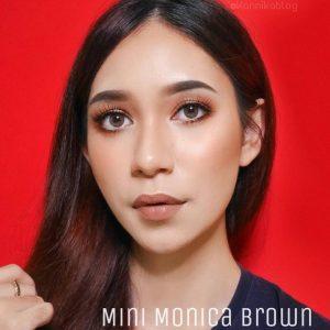 dreamcolor_mini_monica_brown