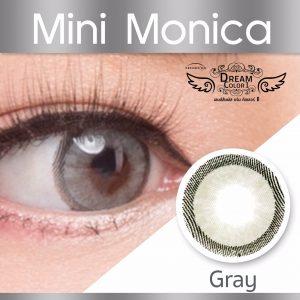 mini monica gray